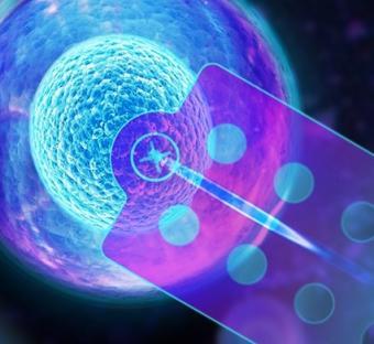 Single Cell Manipulation - FluidFM®