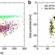 Analisi del potenziale zeta della singola particella biologica