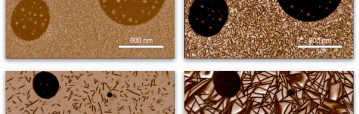 Probing Nanoscale Structure & Properties of Polymers: Advances in Atomic Force Microscopy