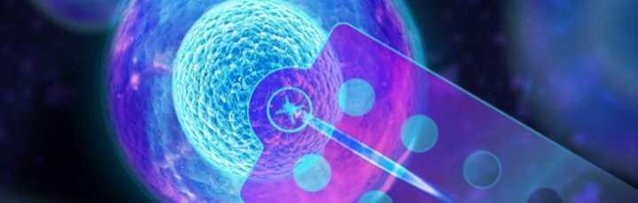 Manipolazione singola cellula - FluidFM