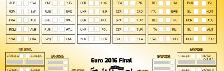 Nano-Observer Microscopio AFM lancia la sfida per Euro 2016!