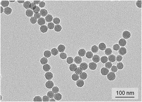 STED fluorescent silica nanobeads