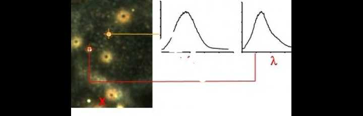 Cubo di dati iperspettrale e spettri delle nanoparticelle