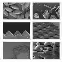 Microscopi per imaging sulla nanoscala