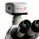 Fotocamere digitali Infinity per microscopi digitali